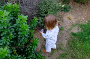 Searching for her little felted eggs
